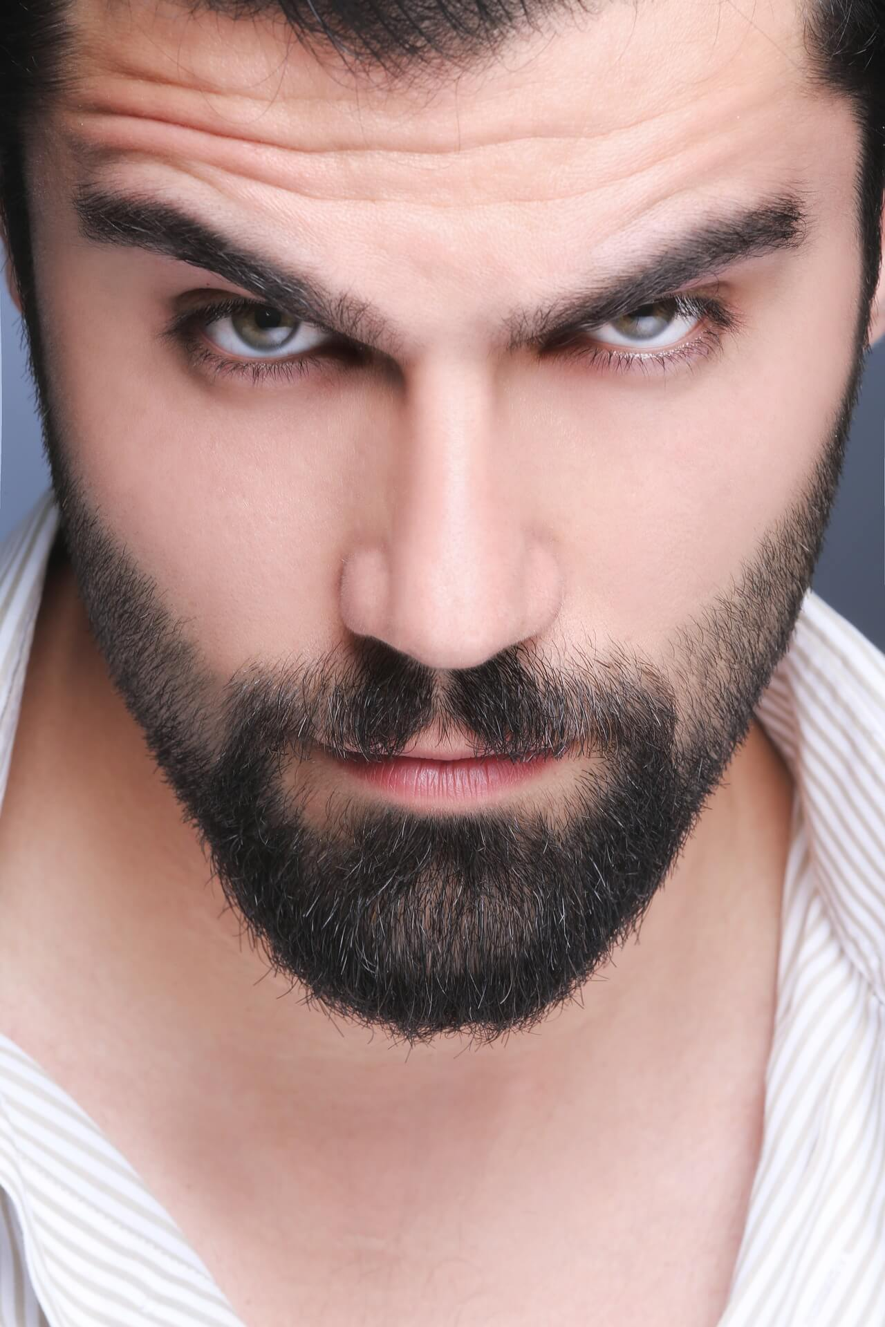Awesome Find The Best Beard Style For Your Face Shape Beard Berry Schematic Wiring Diagrams Phreekkolirunnerswayorg